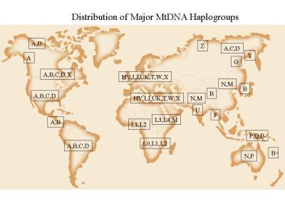 HaplogroupsMap